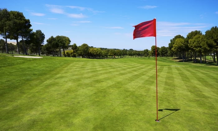 South Gleason Golf Course - South Gary: 18 Holes of Golf with Cart Rental for Two or Four at South Gleason Golf Course (Up to 56% Off)
