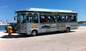 City View Trolley Tours: Hop-On, Hop-Off Trolley Tour for One, Two, or Four from City View Trolley Tours (46% Off)