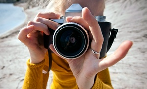 Laurie Holland Photography: $88 for $175 Groupon — LAURIE HOLLAND PHOTOGRAPHY