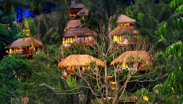 Bali: 4* Stay in Jungles of Ubud 10