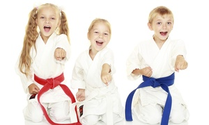 Hauth's Family Taekwondo Center: 3 Months of Unlimited Kids' Martial Arts Classes at Hauth's Family Taekwondo Center (75% Off)
