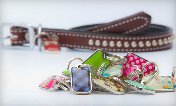 blanketID: $25 for a Doggie Tag and Six-Year blanketID Subscription from blanketID ($69.98 Value)