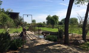 N'uovo Agriturismo: Menu vegetariano,pernottamento e prima colazione per 2 nel Parco del Ticino presso N'Uovo Agriturismo(sconto fino a 57%)