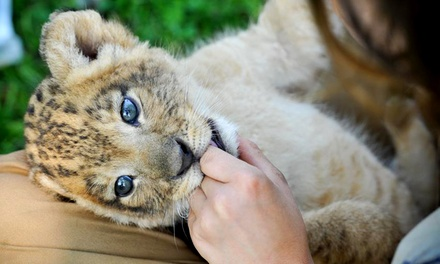 $225 for a One-Week Eco-Adventure Kids' Camp for One at Bowmanville Zoo ($450 Value)
