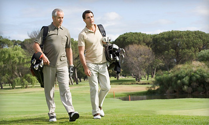 Performance Golf Academies of America - Dublin: Golf Instruction or Club Fitting at Performance Golf Academies of America (Up to 79% Off). Four Options Available.