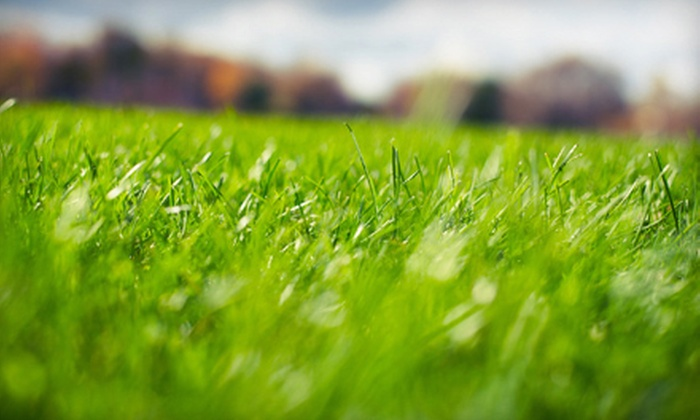 Grasshopper Gardens - Albany / Capital Region: Weed-Control and Crabgrass Treatment with Fertilizer and Option of Aeration from Grasshopper Gardens (Up to 70% Off)