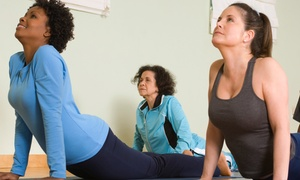 Heads & Tails Yoga: $55 for 10 Yoga Classes at Heads & Tails Yoga ($150 Value)