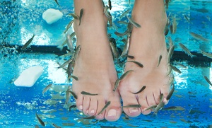 Sesión de ictioterapia con masaje y reflexología podal para una o dos personas desde 9,90 €