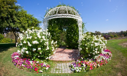 Individual or Family Plus Membership for One Year to South Coast Botanic Garden (48% Off)