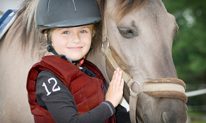 Lucky Stables LLC - Neenah: $39 for Two 60-Minute Private Horseback-Riding Lessons at Lucky Stables LLC ($80 Value)