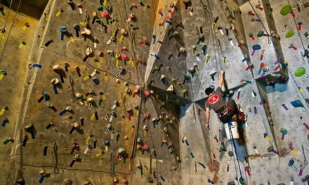 Top-Rope Course with 3 or 5 Rock-Climbing Passes and Rentals at New Heights Rock Climbing Gym (Up to 58% Off)