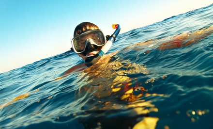One-Hour Snorkeling Tour for One or Two at Gold Coast Scuba (Up to 51% Off)