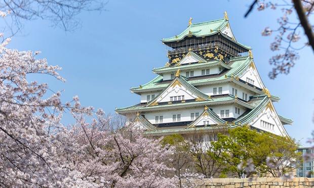 Japan: Cherry Blossom Tour 1
