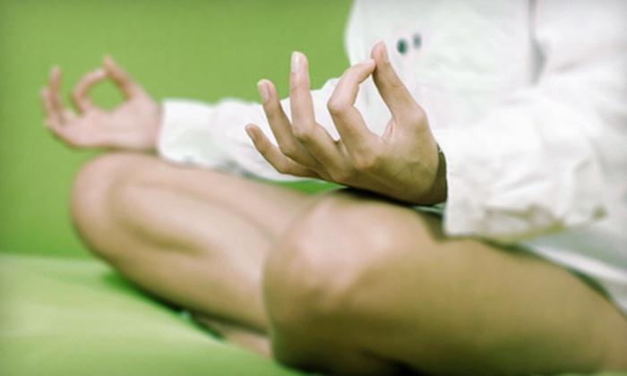 The Yoga Pioneers - Bloomington: 10 or 15 Hot-Yoga Classes at The Yoga Pioneers in Bloomington (Up to 65% Off)