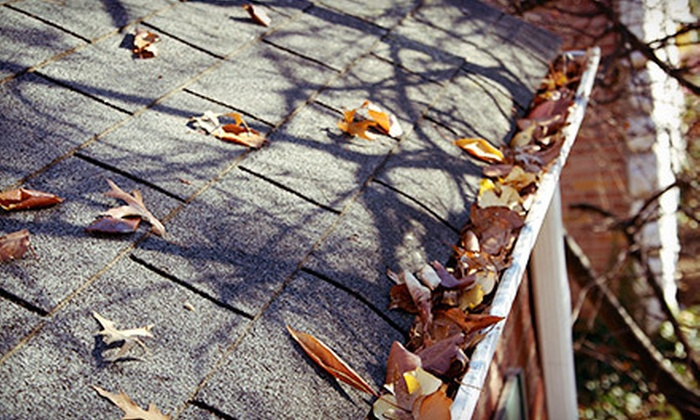 Evans Brothers Gutters - Colorado Springs: Gutter-Cleaning Visits from Evans Brothers Gutters (Up to 70% Off). Four Options Available.