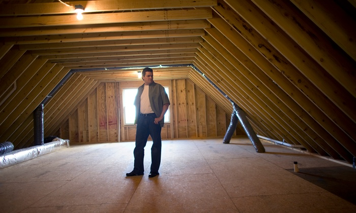 Genesis Restoration Ltd. - Vancouver: $750 for Attic or Crawlspace Mold & Moisture Inspection with Report from Genesis Restoration Ltd. ($1,500 Value)