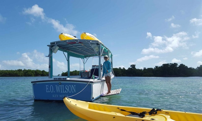 Nature Watch - Key West: 4.5-Hour Kayak Tour of Key West National Wildlife Refuge for Up to Four or Six from Nature Watch (Up to 37% Off)