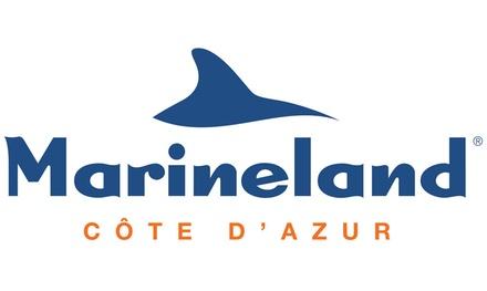 Billets combinés adulte ou enfant pour Marineland et Kid's Island ou Marineland et Aquaspash dès 32 € au parc Marineland