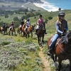 Up to 53% Off Horseback Riding in Moss Beach