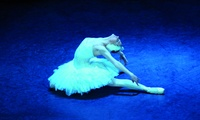 2 Karten der PK2 für den Ballett-Klassiker Schwanensee in über 20 Städten zwischen Dezember 16 und März 17 (32% sparen)