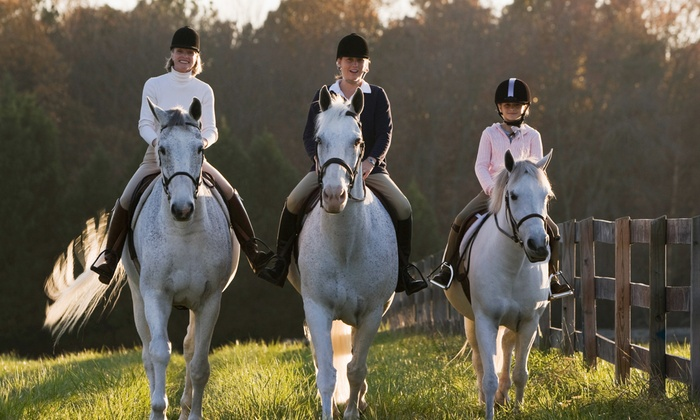 Orion Riding Academy - Rambling Hills West: Two Horseback-Riding Lessons for One or Two at Orion Riding Academy (Up to 51% Off)