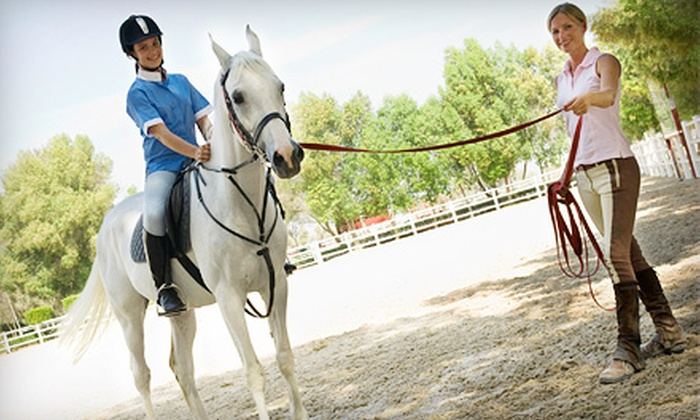 Baymar Farms - Morganville: Three Private Horseback-Riding Lessons, One Week of Summer Camp, or Three Group Lessons at Baymar Farms (Up to 52% Off)