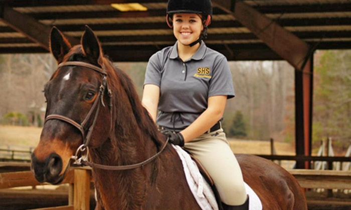 In Your Dreams Farm - Alpharetta: 60-Minute Group Horseback-Riding Lesson for One or Two at In Your Dreams Farm (Up to 55% Off)