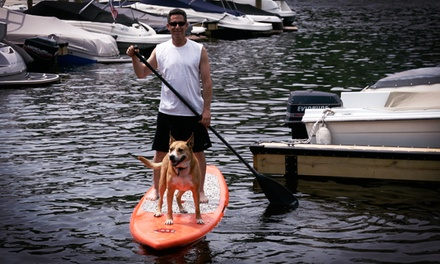 Kayak, Standup-Paddleboard, or Pontoon-Boat Rental from Lakeview Marina (Up to 51% Off). Six Options Available.