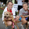 51% Off Entry in The Continuum 5K-9 Race