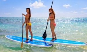 Surfari Surf School: 24-Hour Standup-Paddleboard Rental or 2-Hour Group Lesson for One or Two at Surfari Surf School (Up to 57% Off)