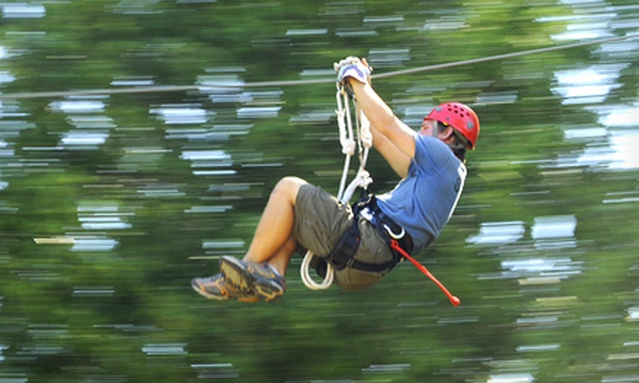Wildman Adventure Resort - Niagara: 1.5-Hour Ziplining Tour for One, Two, or Four from Wildman Adventure Resort (Up to 58% Off)