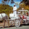 Up to 55% Off Carriage-Ride Package