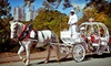 Piedmont Park - Northeast Atlanta: Romantic Carriage Ride for Two with Champagne or Family Ride for Up to Six with Cocoa at Piedmont Park (Up to 55% Off)