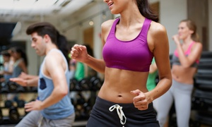The Dance Machine: Four, Eight, or Twelve Fitness Classes at The Dance Machine (Up to 67% Off)
