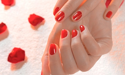 Shellac Mani-Pedis or One Year of Mani-Pedis at Caruso and Company Nail Spa (Up to 54% Off)