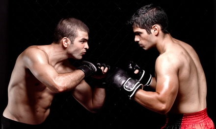 10 Boxing, Kickboxing, or Jiu-jitsu Classes with Optional Boxing Gloves at UFC Gym         (Up to 73% Off)