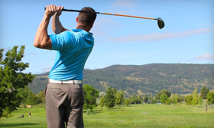 Golf in Motion - West Town: Swing Evaluation with Optional Putting Lesson, or Club Fitting from Golf in Motion at Chicago Style Golf (Up to 59% Off)