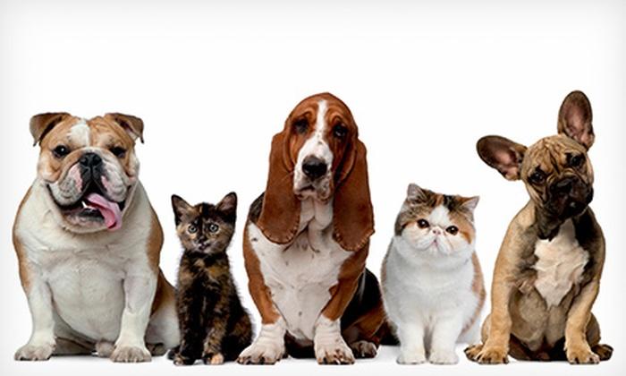 Legend Acres - 5: $25 for $45 Worth of Pet Kennel Services at Legend Acres