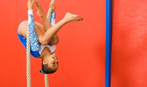 Elite Gymnastics Academy: One Month of Open-Gym Time for Two or Four Kids Aged 12 or Older at Elite Gymnastics Academy (Up to 66% Off)