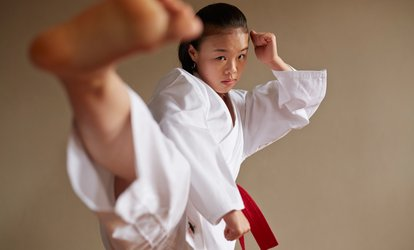 image for Two or Eight Taekwondo Classes Weekly for One Month at Limitless Fitness and Martial Arts (Up to 71% Off)