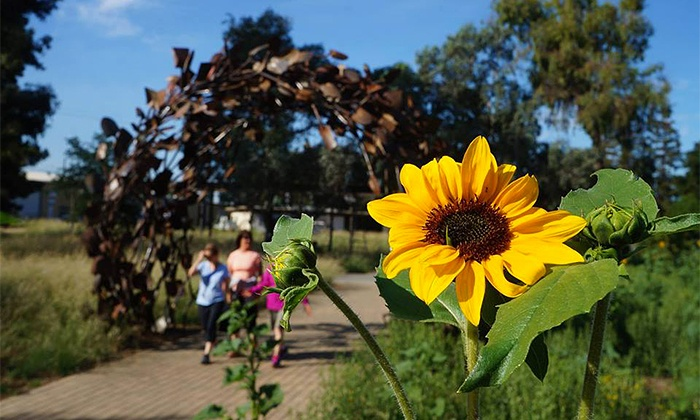 UC Davis Arboretum and Public Garden - University of California Davis: $29 for a One-Year Family Membership to UC Davis Arboretum and Public Garden to the Friends Group ($60 Value)