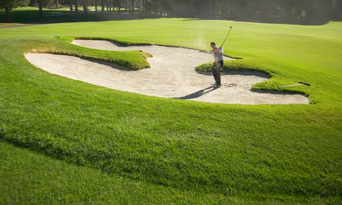 Blue Sky Media - Old Brickyard Golf Club: One or Two VIP Cards with 10 Rounds of Golf and 10 Buckets of Range Balls from Blue Sky Media (Up to 62% Off)