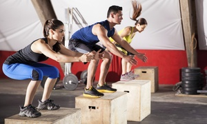 Primal Health & Fitness: Two Weeks or One Month of Unlimited CrossFit Classes at Primal Health & Fitness (Up to 67% Off)