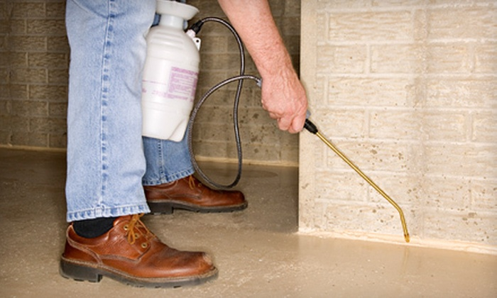 Buchanan Pest Management - San Antonio: $49 for a Full-Home Inspection and Pest-Control Treatment from Buchanan Pest Management ($230 Value)