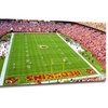 NFL Panoramic Stadium Gallery-Wrapped Canvas Prints
