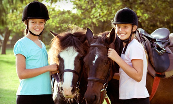 West Equestrian Ranch - Tulsa: Two or Four Group Riding Lessons or Two Private Lessons at West Equestrian Ranch in Sand Springs (Up to 60% Off)