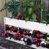 Vertical 3-Tier EcoFlex Garden Wall Planter for Decks