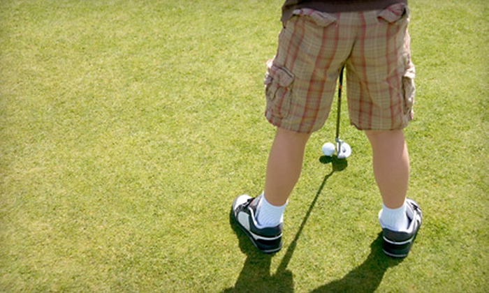 The Golf Zone Learning Center - Multiple Locations: $149 for Five Days of Kids' Half-Day Summer Golf Camp at The Golf Zone Learning Center ($300 Value)