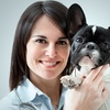 Up to 66% Off Veterinary Exam and Grooming