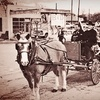 Up to 61% Off Carriage Ride for Up to Six